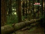 Таинственные пути - сезон 2х03